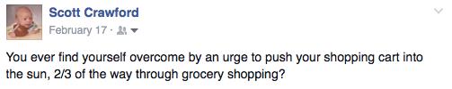 shoppingcartintothesun